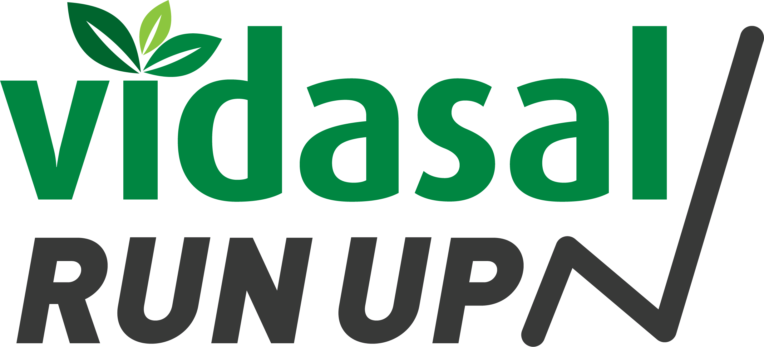 Vidasal Run Up - Alliansloppet
